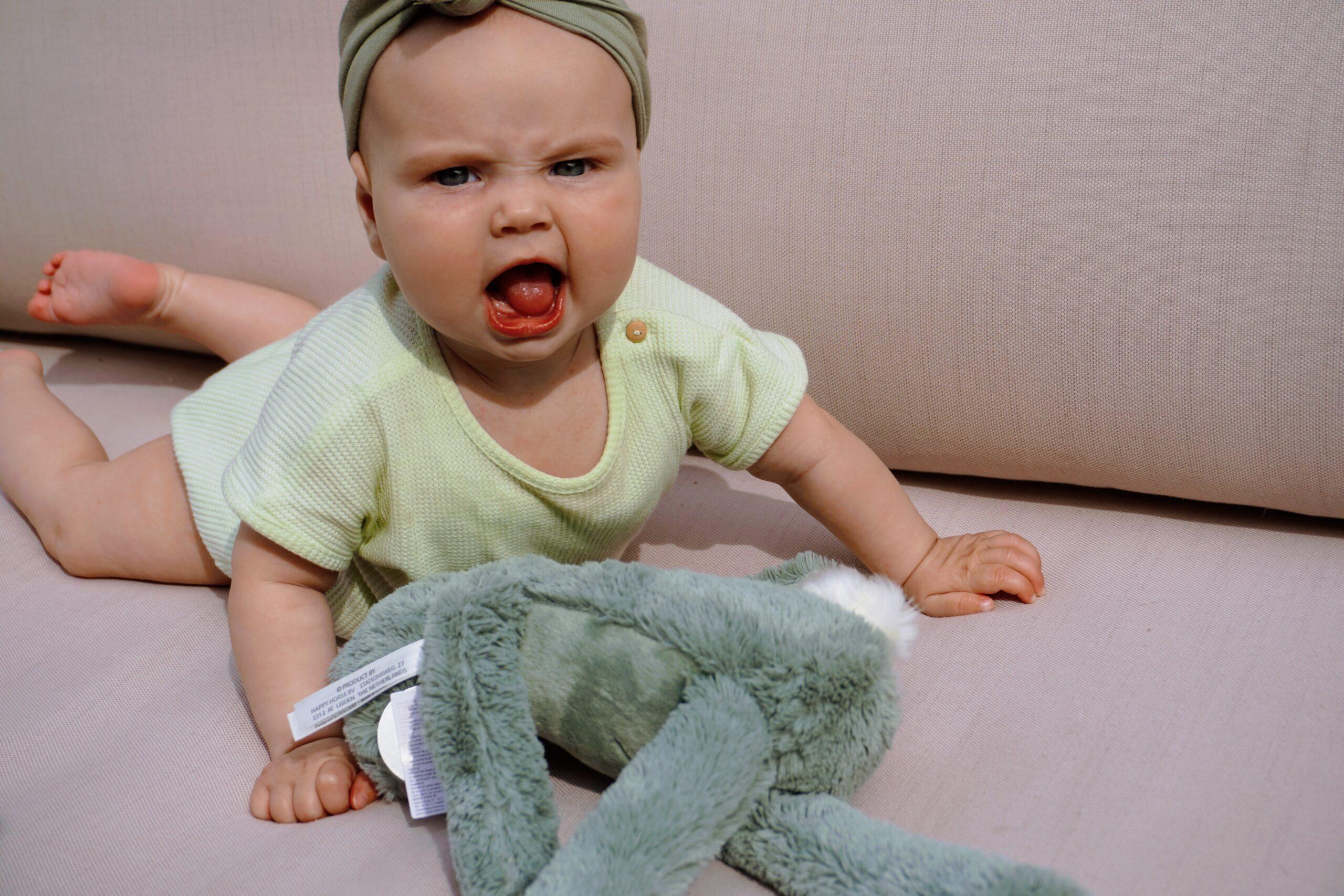 HAppy Horse knuffelkonijn groen